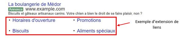 Exemple extensions de liens Adwords